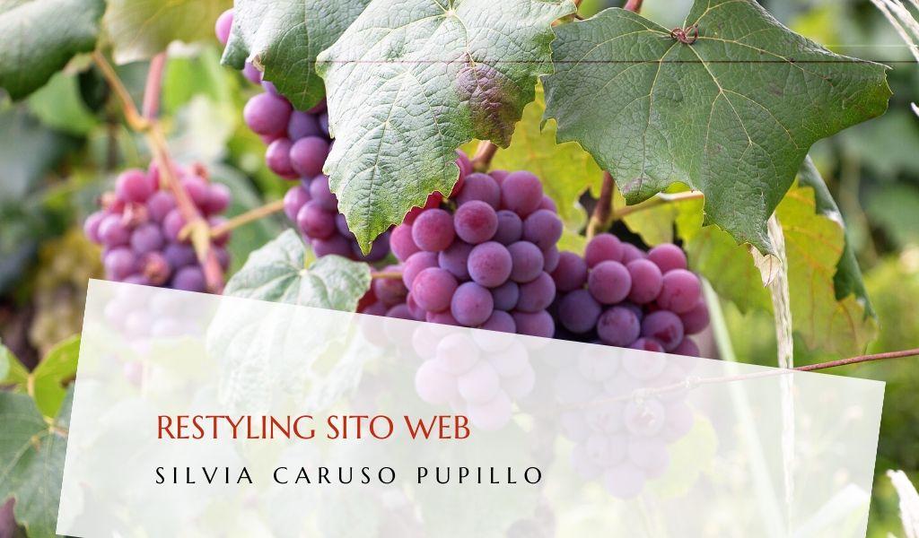 Restyling del sito web Cantine Gulino - dsmarketing